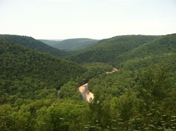 Loyalsock Canyon Vista